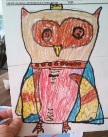 Owl drawing